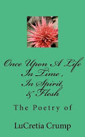 This Just In… Once Upon A Life, In Time, In Spirit, And Flesh by LuCretia Crump