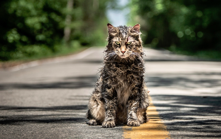 Stephen King: Pet Cemetery  Was too Scary to Publish