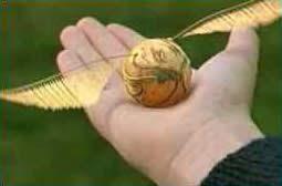 Quidditch, Anyone?